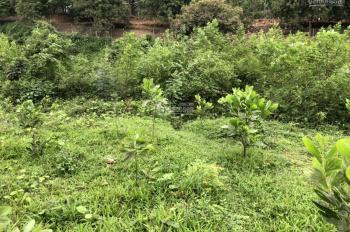 Bán lô đất tại Lương Sơn, Hòa Bình, tổng diện tích 836m2 thực tế sử dụng 900m2
