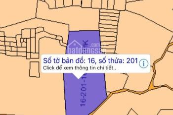 Cần tiền bán 1.6 mẫu tràm, Xuân Thành, Xuân Lộc, Đồng Nai, giá 120tr/sào (TL), 0846339579