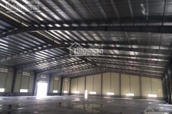 Cho thuê kho xưởng khu Nam Long, Huỳnh Tấn Phát, Trần Xuân Soạn, Quận 7, giá rẻ