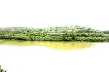 Bán S = 84.129,2m2 (hơn 8ha) trong đó 300m2 đất ở, có 1.1ha mặt hồ view đẹp tuyệt vời, giá 6 tỷ