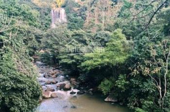 Đất nền biệt thự nghỉ dưỡng khu DamBri, Lâm Đồng, sổ hồng trao tay