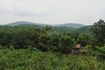 Cần bán nhanh lô đất 3000m2 đất làm nhà vườn nghỉ dưỡng giá rẻ tại Hòa Sơn, LS, HB