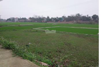 Bán đất Phú Cát, TĐC Vai Réo, CNC Hòa Lạc, 400 m2, giá 4 tr/m2. LH 0961.266.229