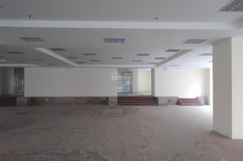 Cho thuê 2 lô biệt thự liền kề cạnh nhau, dự án 35 Lê Văn Thiêm, Thanh xuân, DT đất 220m2