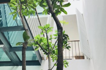 Cho thuê nhà hẻm rộng 343/1C Nguyễn Văn Trỗi gần Nguyễn Trọng Tuyển, P. 1, Tân Bình