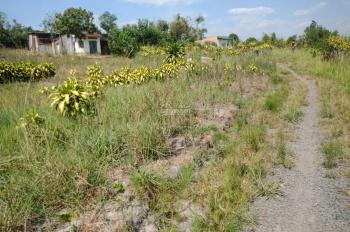Bán đất giá rẻ P. Lộc Phát, Tp Bảo Lộc, DT 906m2, giá 545 tr