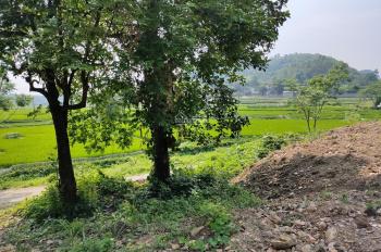 Cần chuyển nhượng lô đất tại Liên Sơn, Lương Sơn, Hòa Bình DT 2000m2 có 100m2 đất ở