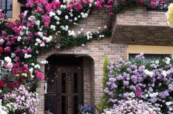 Quỹ căn biệt thự khủng mở bán tại Vinhomes Riverside, Vinhomes The Harmony liên hệ: 0931186886