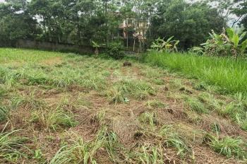 Cần bán nhanh lô đất 2954m2 đất làm nhà vườn nghỉ dưỡng views cánh đồng tại Hòa Sơn, Lương Sơn, HB