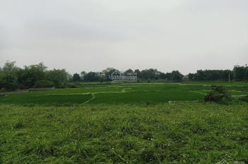 Cần bán lô đất 5000m2 đất làm nhà vườn nghỉ dưỡng giá đầu tư tại Hòa Sơn, Lương Sơn, Hòa Bình