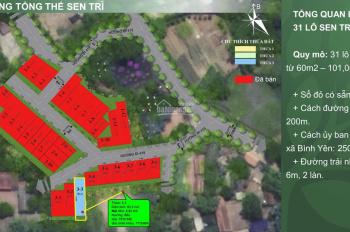 Duy nhất 1 lô ngoại giao không còn lô thứ 2 của 31 lô Sen Trì, Bình Yên, Thạch Thất cách CNC 1.5km
