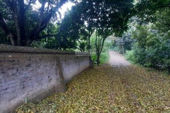 Bán gấp đất thổ cư vuông vắn có hai mặt đường, tại Lương Sơn, Hòa Bình, diện tích 4276m2