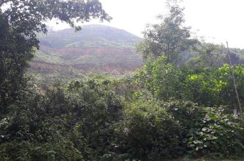 Đất 2ha (20.000m2) có 200m2 thổ cư, 5000m2 đất vườn. Gần Flamigo Đại Lải Phúc Yên, LH 0972525080