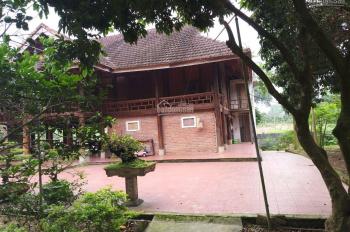 Bán nhà vườn hoàn thiện 5200m2 tại Hoà Sơn, Lương Sơn giá 4,9 tỷ