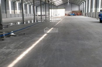 Cho thuê 600m2, kho xưởng, đường Lê Văn Thọ, Gò Vấp