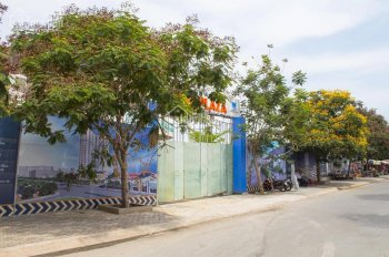 Dự án căn hộ cao cấp Viva Plaza - tiểu Singapore của khu Nam Sài Gòn, điểm sáng cho nhà đầu tư