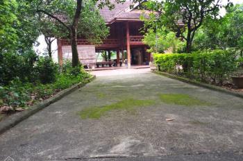Nhượng lại khuôn viên nhà sàn đẹp diện tích 5220m2 có 400m2 đất thổ cư tại Hòa Sơn, Lương Sơn, HB