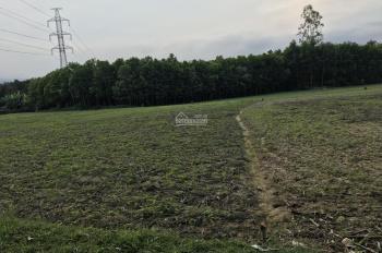 Bán 1092m2 đất màu đường bê tông ô tô Hoà Nhơn, Hoà Vang, giá 590 triệu