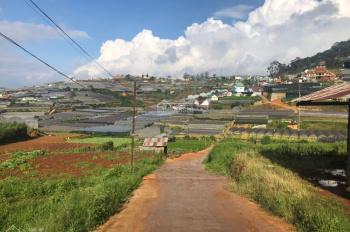 Cần bán đất xây dựng 327m2 6.6 tỷ đường Trịnh Hoài Đức, Phường 11, Đà Lạt, Lâm Đồng