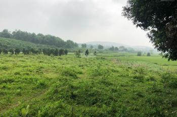Bán 5540m2 đất trang trại nhà vườn có ao, view cánh đồng, Hòa Sơn, Lương Sơn, Hòa Bình giá 2.9 tỷ