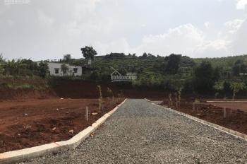 Bán đất đường Mạc Đĩnh Chi trung tâm Tp Bảo Lộc, 450tr/100m2 đường ô tô 6m, SHR, LH 0902588995