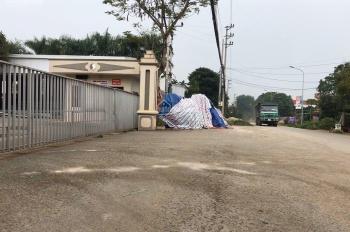 Bán lô đất 5.600m2 làm kho xưởng mặt đường 446 - Tiến Xuân - Thạch Thất, giá hợp lý