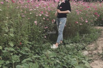 Tôi có ông chú cần bán 40ha đất trông cây lâu năm tại Tràng Định, Lạng Sơn, 100tr/ha