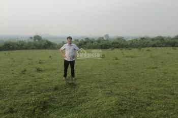 Bán 4000m2 đất tại Cư Yên, Lương Sơn, Hòa Bình