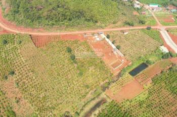 Bán đất home stay 900m2 có sẵn từ 350 - 450m2 thổ cư cách Bảo Lộc 8km, giá 1.8 tỷ. LH 0938636538