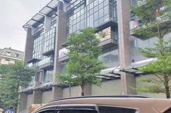 Bán nhà mặt phố Hào Nam 145m2x5 tầng, có tầng hầm
