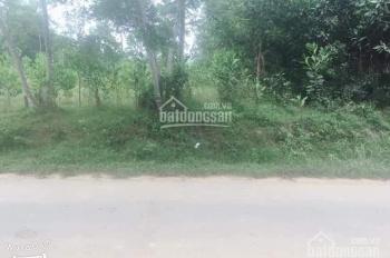 Đất nền, vườn giá rẻ Hòa Ninh, Hòa Vang, Tp Đà Nẵng. LH: 0935487067