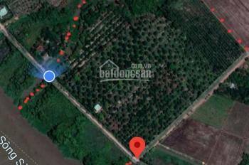 Bán 3,5 ha đất mặt tiền sông Sài Gòn An Tây, Bến Cát
