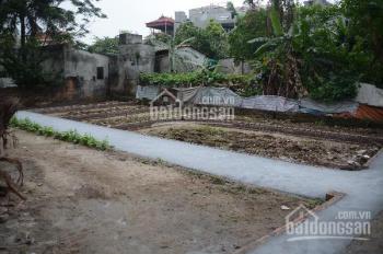 Hàng độc chia 5 lô đất thổ cư thôn Lai Xá, Kim Chung, Hoài Đức DT 35m2
