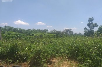 Bán đất nghỉ dưỡng đường Lê Thị Riêng, Tp Bảo Lộc