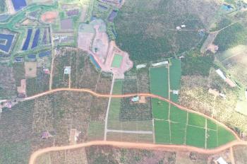 Cần bán gấp đất ngay gần các dự án khu dân cư Đambri, thành phố Bảo Lộc, Lâm Đồng