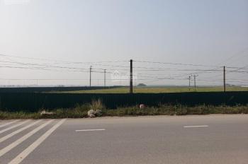 Cho thuê 45000m2 đất để xây dựng kho bãi, nhà xưởng