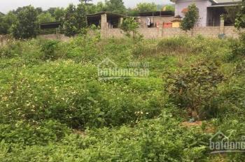 Bán 1845m2 đất làm nhà vườn tại Cố Đụng, xã Tiến Xuân, Thạch Thất, Hà Nội. LH 0973.378.150