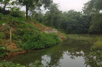 Bán đất xã Tiến Xuân, Thạch Thất, Hà Nội, diện tích rộng 12520m2