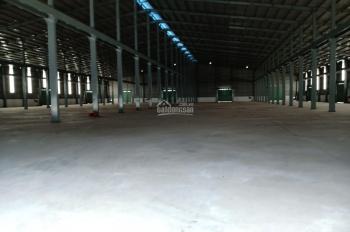 Công ty cần cho thuê kho, nhà xưởng trong cụm công nghiệp Phú Thạnh, huyện Nhơn Trạch tỉnh Đồng Nai