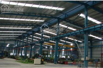Chính chủ cho thuê gấp nhà máy SX cơ khí diện tích 4200m2/12000m2 đất Cẩu Trục 5T VP 3 tầng
