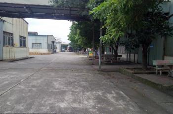 Cho thuê kho tại Phố Nối, Hưng Yên mặt Quốc lộ 39A cách ngã tư đường 5 gần 500m. DT 500m2 - 8000m2