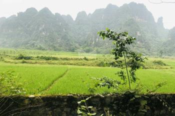 Hàng hiếm: 2 mảnh thổ cư gần kề, giá rẻ tại Lương Sơn, Hòa Bình, 1800m2 chỉ có 900 triệu