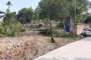 Bán gấp 1500m2 đất thổ cư nhà vườn ở Nhuận Trạch Lương Sơn HB, đường bê tông đi lại thuận tiện