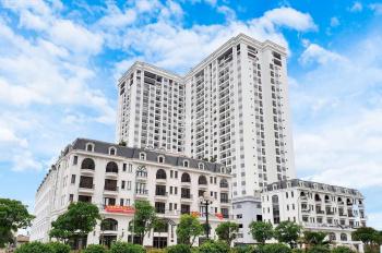 Bán căn duplex, penthouse TSG Lotus siêu sang LK Vinhomes Riverside Long Biên giá chỉ 25,3tr/m2