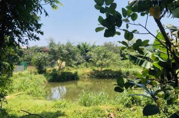 Cần chuyển nhượng 1,2ha giá rẻ có ao, đường rộng, thoáng đẹp, Hòa Sơn, Hoà Bình, giá 400 ngàn/m2
