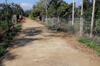 Bán đất nghỉ dưỡng và vườn trái cây, có viu suối lớn giá rẻ tại thị trấn Đạ M'Ri