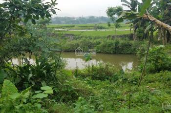 Bán 2 lô đất thổ cư Lương Sơn, Hòa Bình, đất có ao, có suối, view đẹp, giá rẻ