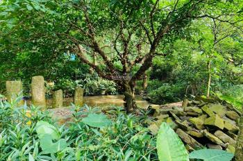 Chính chủ bán gấp lô đất thổ cư 1.3ha (13.000m2) tại huyện Lương Sơn tỉnh Hòa Bình