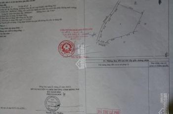 Chính chủ bán gấp 18 sào đất rẫy nghỉ dưỡng thành phố Long Khánh. LH: 0903.086.556
