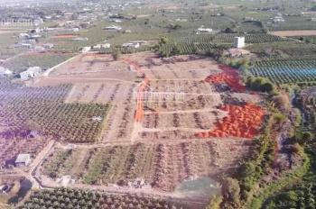 Bán đất đường nhựa 12m view sông bậc nhất Bình Thuận. LH: 0916593459